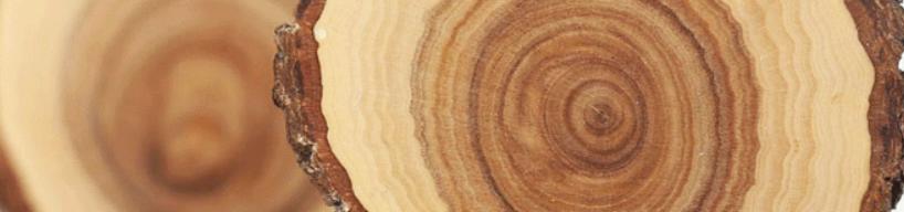 Sandalwood for carving