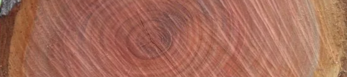 pear wood for carving