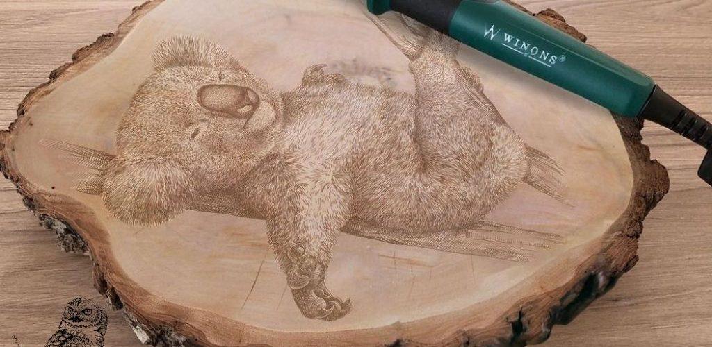 Top 6 beginner wood burning kits