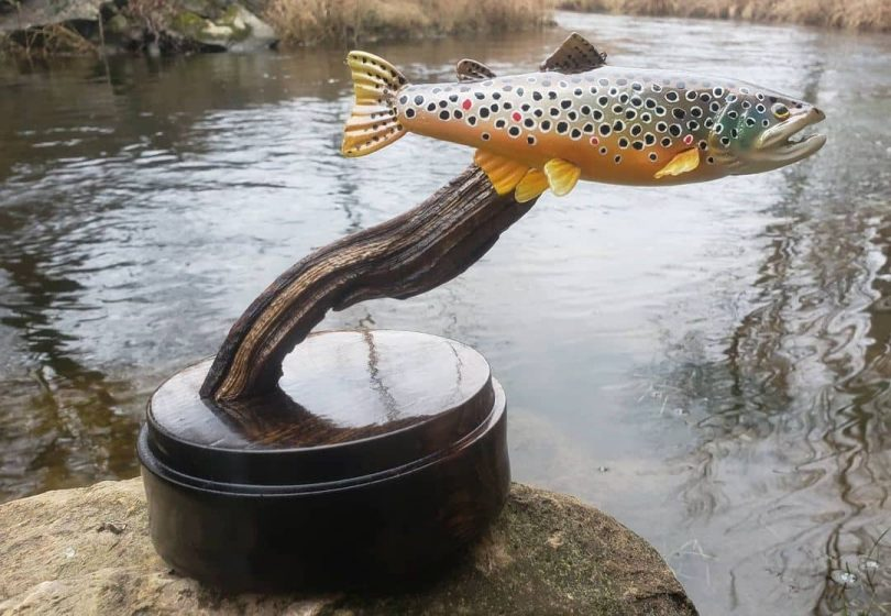 """Trout are 6 inches in length Author - <a href=""""https://www.instagram.com/finsinframes/"""" rel=""""nofollow"""">Fins In Frames</a>"""